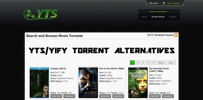 Top 100 torrent